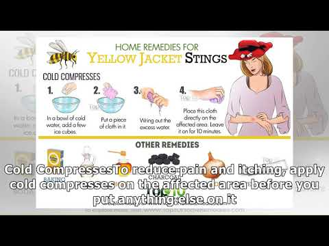 Home Remedies for Yellow Jacket Stings