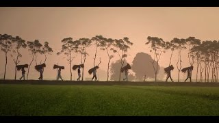 IndoFarm's tribute to Farmers | ThankYouKisaan