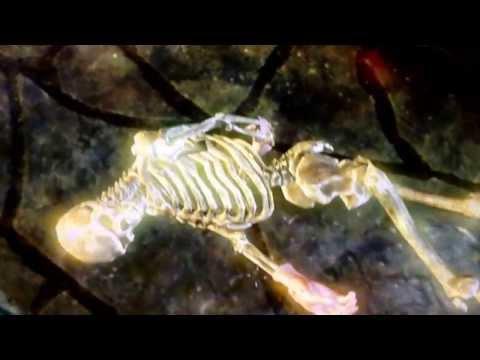 Skyrim Dragonborn Miraak flesh Glitch