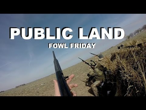The BEST Tips for Public Land Duck Hunting!!