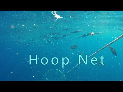 Hoop net to catch ballyhoo.