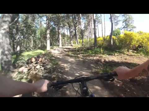 Tarland Mtb Trails - Scott riding the red and the blue