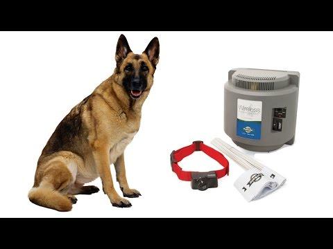 Petsafe Wireless Dog Fence - PIF-300 Review