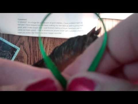 how to make a winners sash !