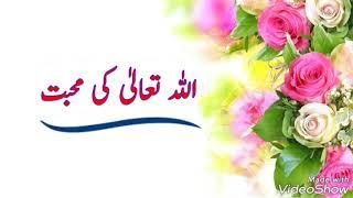 """Allah"" aur ☆《Uski Mohabbat》- by Mumtaz Parveen"