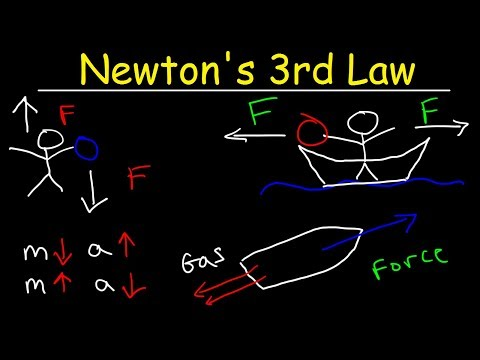 Newton's Third Law of Motion Explained, Examples, Action and Reaction Forces, Physics Problems