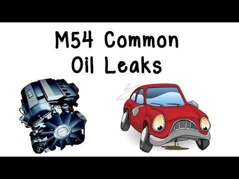BMW M54 Common Oil Leaks (E46/E39/E60/E83/E85)