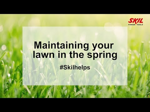 Maintaining your lawn in the spring