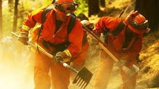 California Caught Forcing Inmates To Fight Dangerous Wildfires