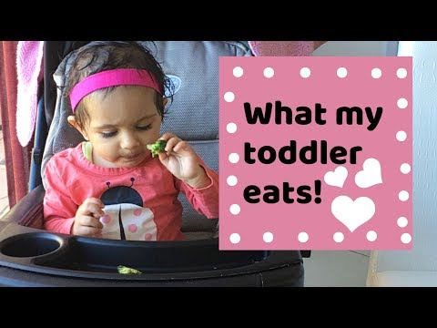 What my toddler eats in a day | Indian vegetarian meal for babies 2017
