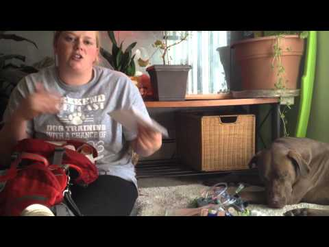 How to:Emergency meds & what's in service dogs vest