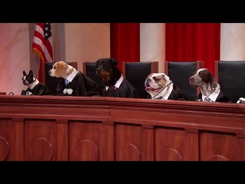 Endrew F. v. Douglas City School District: Oral Argument - January 11, 2017