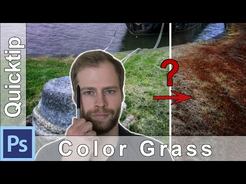 Photoshop Quick Tip: How to Change the Color of Grass