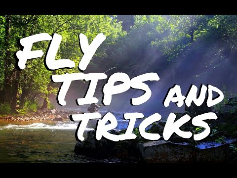 How To Fly Fish - BEST Beginner Fly Fishing Tips & Tricks -  Questions Answered