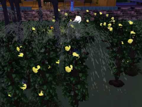Sims 3 Edison family Life Plant garden