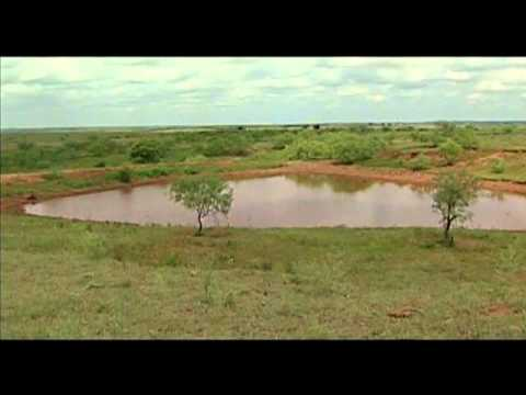 Farm Pond Management Show  (2004)