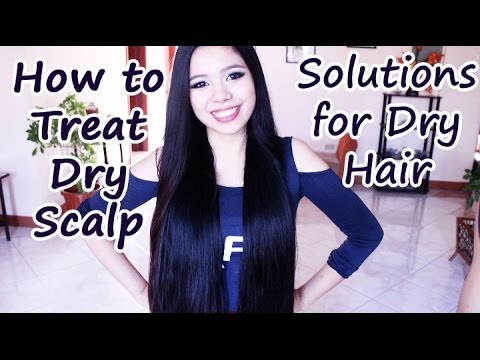 How to Treat Dry Itchy Scalp, Dry Hair and Dandruff -Beautyklove