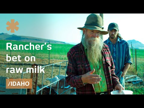 Raw milk: Idaho ranchers on why not to pasteurize