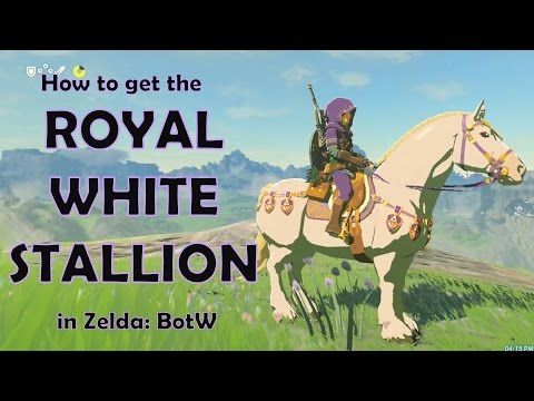 How to get the ROYAL WHITE STALLION in Zelda: Breath of the Wild!