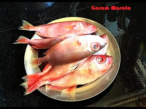 Basic Cooking - How to clean & cut Red Snapper Fish (Chembally)