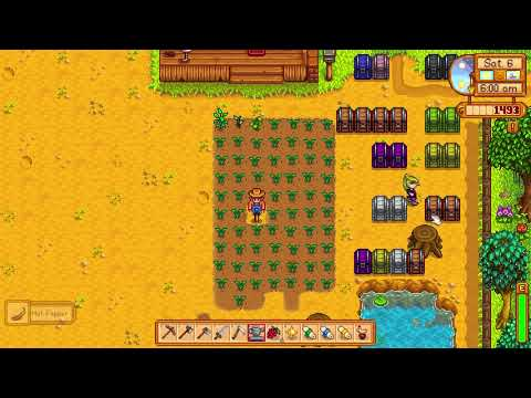 How to get a Hot Pepper - Stardew Valley