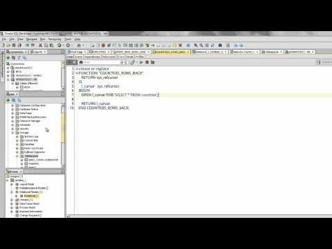Oracle SQL Developer Major Feature Demonstration