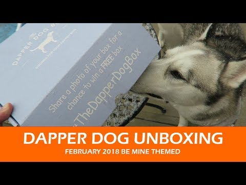 Dapper Dog Unboxing  |  February 2018 Valentines Themed