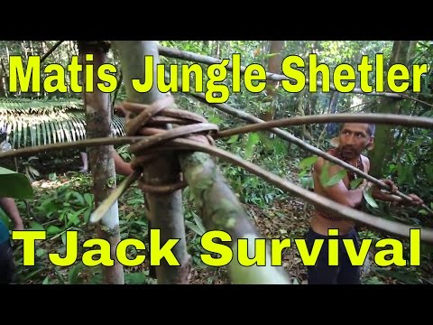 Building a Primitive Matis Shelter in the Jungle
