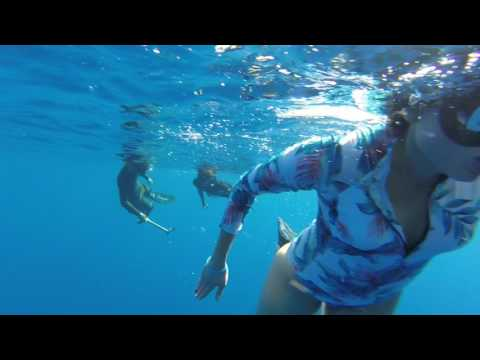 Swimming with Sharks, Hawaii North Shore July 2017