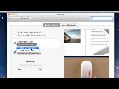 Changing Mouse Settings on a Mac