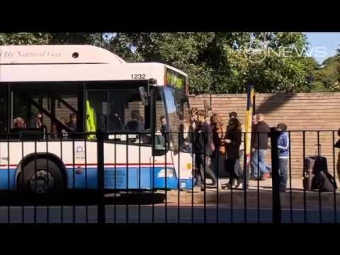 Tram to Randwick?