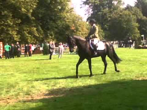 Xxx Mp4 Lizzie Brown Dubarry Burghley Young Event Horse 5yr Old 3GP 3gp Sex
