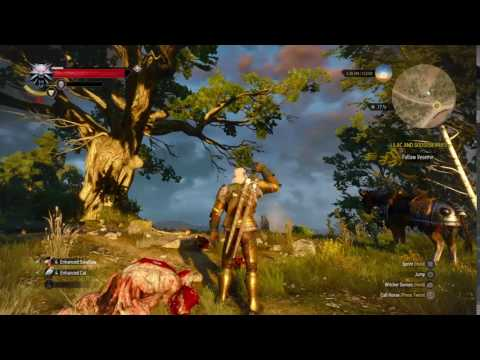 The Witcher 3: Wild Hunt invisible sword bug