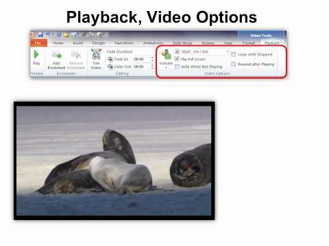 PowerPoint 2010 - Audio & Video Editing