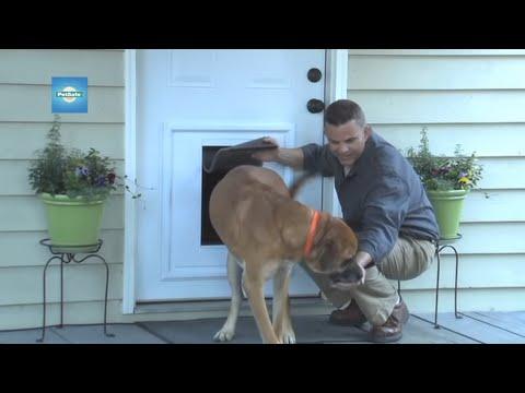 PetSafe Panel Pet Door Insert™ Installation - www.petsafe.net