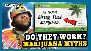 Marijuana Myths Do Weed Drug Tests Work How To Get Weed Out Of Your S