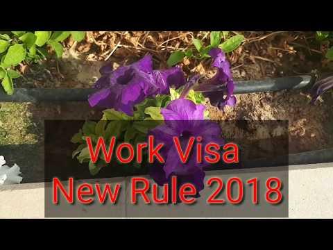 Important News- UAE work visa New rule February 2018