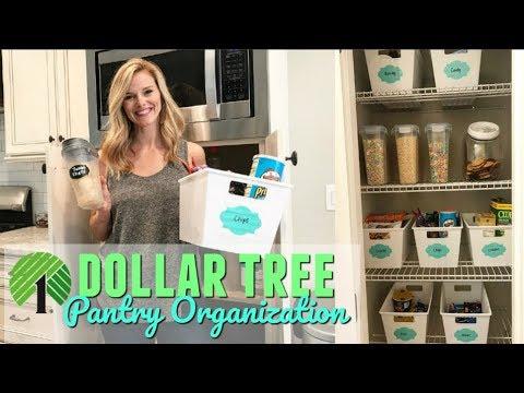 DOLLAR TREE PANTRY ORGANIZATION // CLEAN WITH ME // Brianna K Team Darley collab
