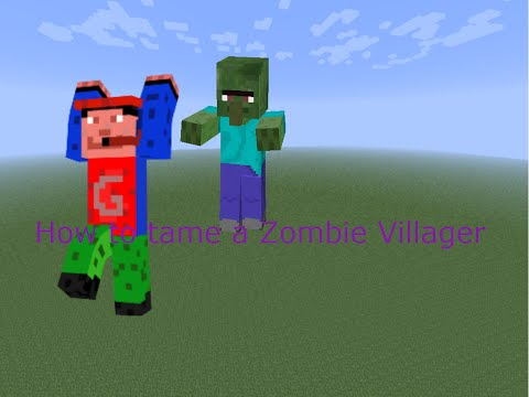 How to tame a zombie villager (READ DESCRIPTION)