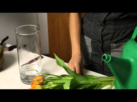 How to Get the Tulip Bouquet to Stand Up : Flower Power