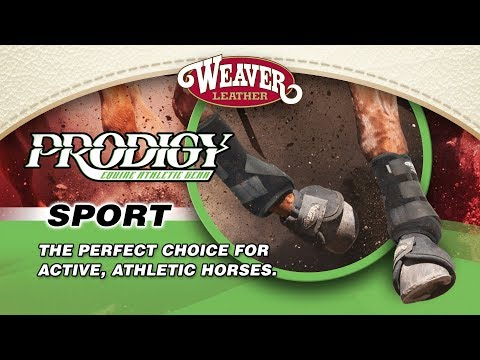 Prodigy Sport Athletic Boots For Horses