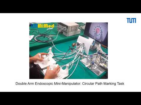 Double Arm Endoscopic Mini-Manipulator System for Transurethral Resection of Bladder Tumors