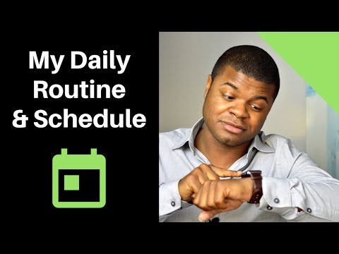 My Daily Schedule & Routine - Realtor Workday