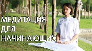 Download Медитация для начинающих [Светлана Нагородная] Video