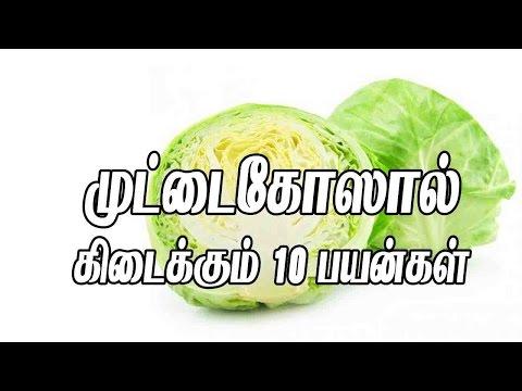 முட்டை கோஸால் கிடைக்கும் 10 நன்மைகள் | Muttaikose | Cabbage #Tamilmaruthuvam
