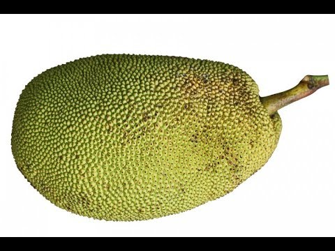 How To Open & Select a Ripe Jackfruit With NO LATEX