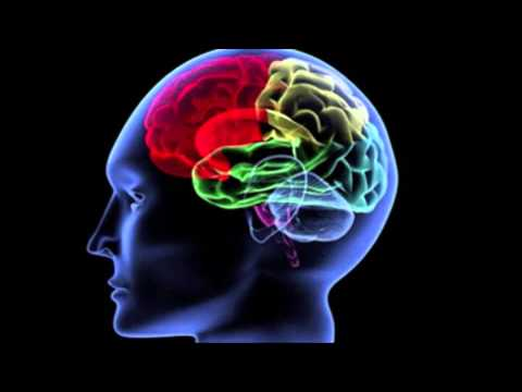 How to Form Good Exercise Habits in the Brain -