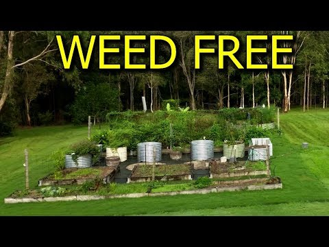 How to Make Weed Free Pathways Around Vegetable Garden