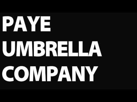 PAYE Umbrella Company   What is a PAYE Umbrella Company