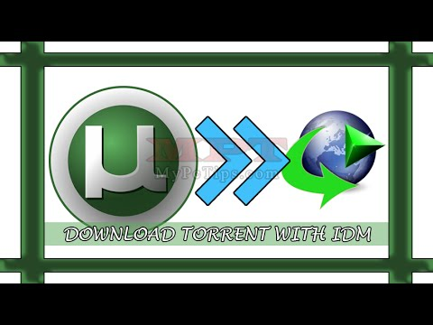 How to Download Torrent File via IDM?